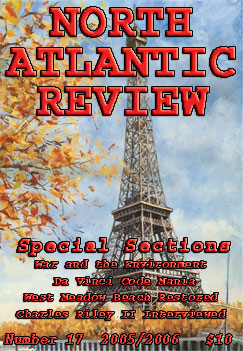 North Atlantic Review, Number 17
